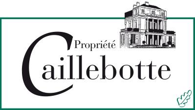 Propriété Caillebotte